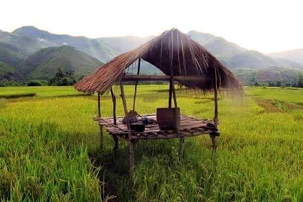 "alt=""A beautifully quiet, sunny morning in the probinsya"""