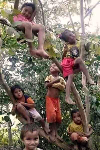 "alt=""Filipino childhood memories kids climbing up a tree"""